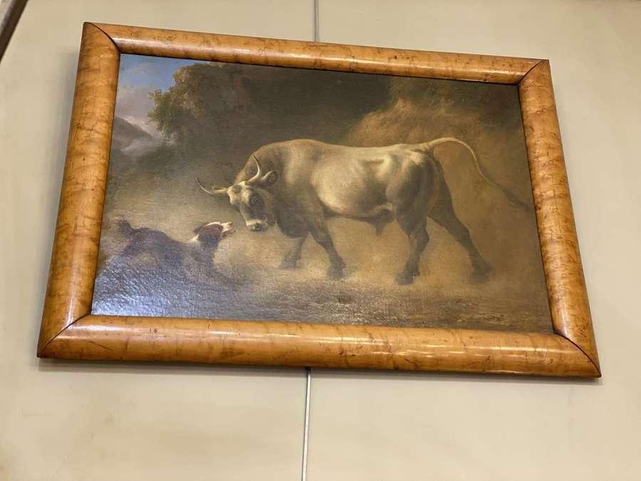 C1820 An Oil on Canvas of a Dog Teasing a Bull